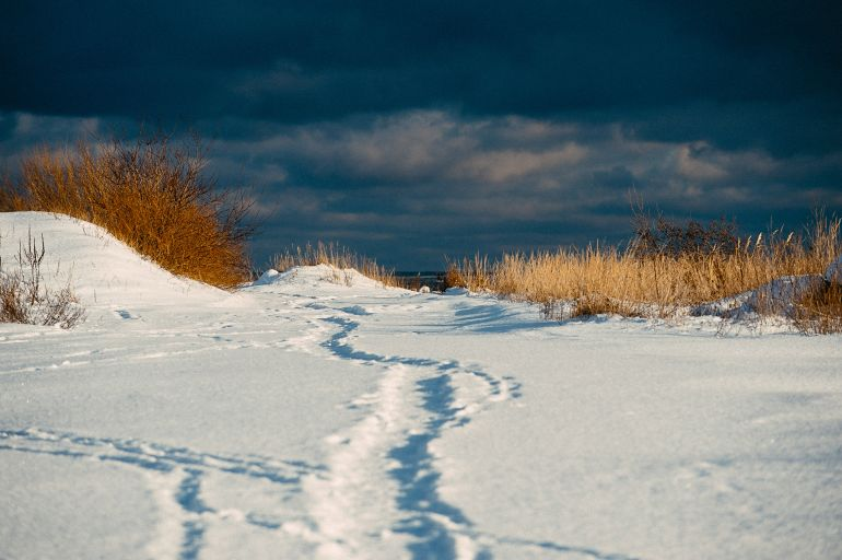 Winter path to sea
