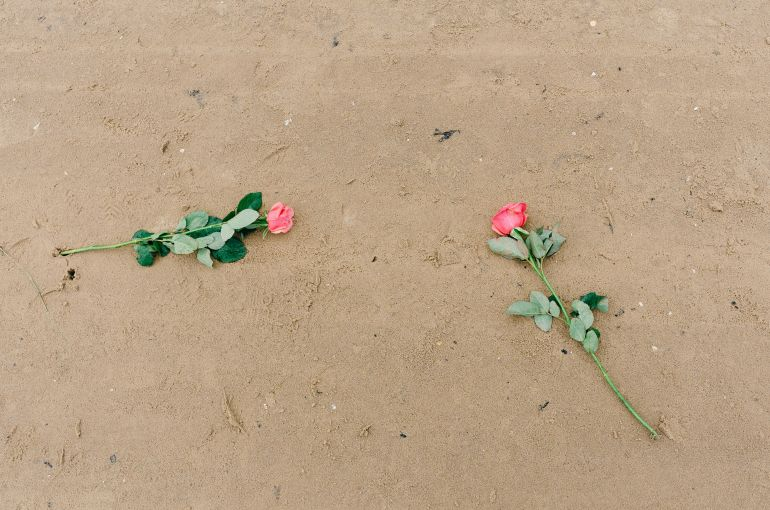 Roses on the sand
