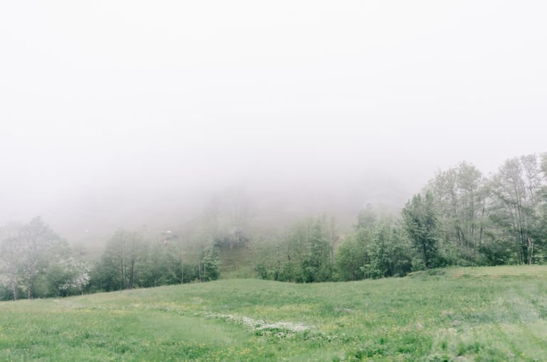 Foggy Day in Black Forest, Germany
