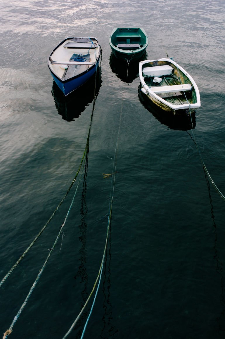 Boats moored in harbour