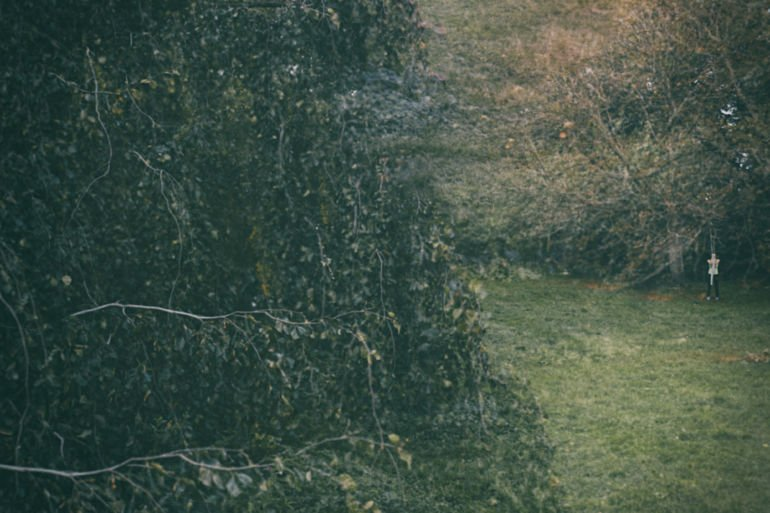 thickets and a human figure in the forest