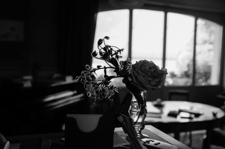 black and white rose in the interior