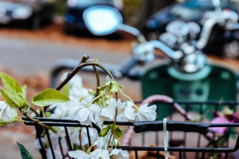 Blossoming branch and scooter