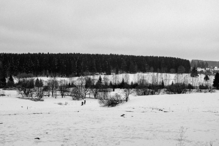 Black and white winter landscape