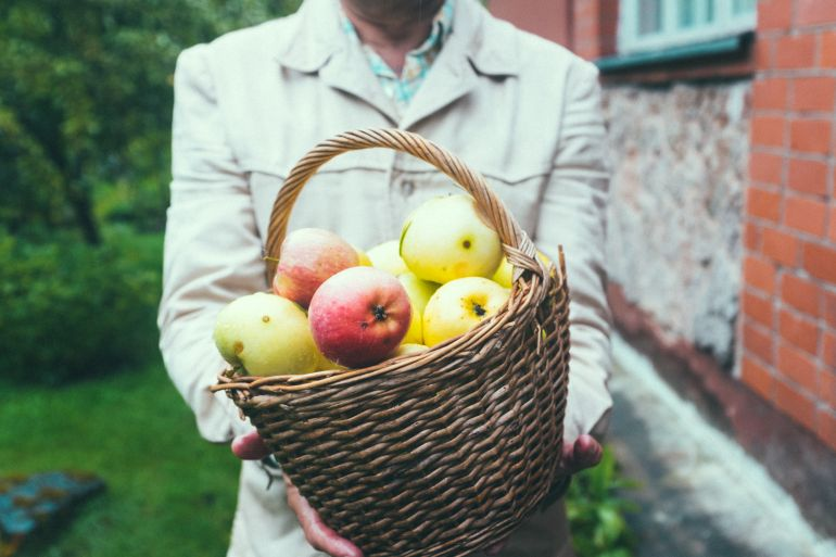 Farmer with a basket of apples